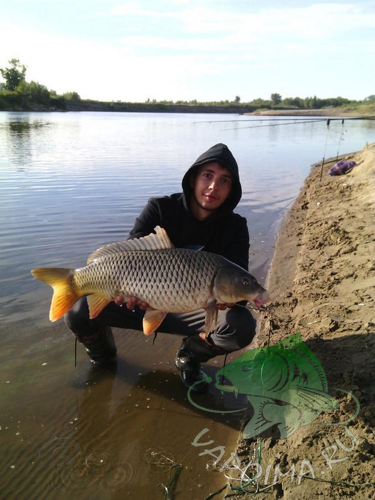 рыбалка на пекше 2016