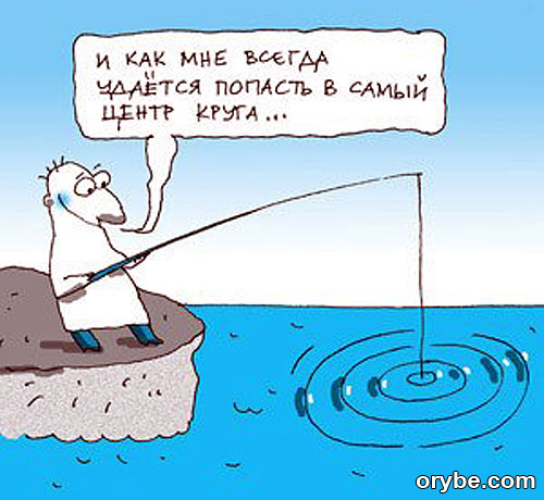 рыба находит прикормку